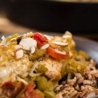 Indian flavored Chicken breast over a bed of rice topped with stewed tomatoes, green peppers, and sliced almonds.