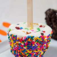 Sideview of an icecream pop rolled in rainbow sprinkles with a popsicle stick in the center sitting on a white plate.
