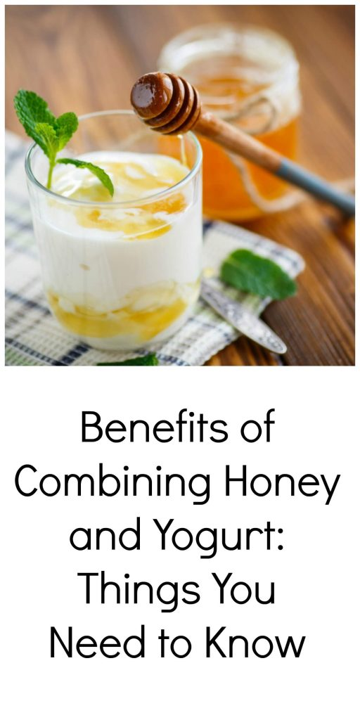 Benefits of Combining Honey and Yogurt: Things You Need to Know   HostessAtHeart.com