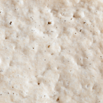 PIcture of a bubbly bread starter
