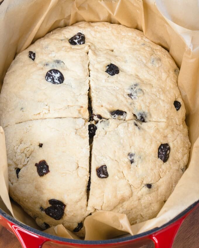 Top-down view of an unbaked whole loaf of Soda Bread dotted with cherries sitting in a dutch oven waiting to be baked.