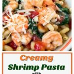 Bowl of cavatappi pasta topped with shrimp, tomatoes, spinach and grated cheese
