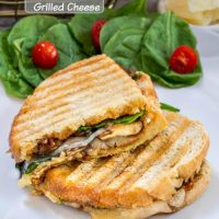 Stacked grilled cheese panini. The bread shows the grill marks and the sandwich has melted cheese oozing down the bread. It's all sitting next to a spinach salad with tomatoes.