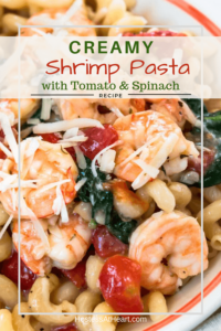 Cavatappi pasta with cooked shrimp, tomatoes, and shrimp tossed with a cheese sauce