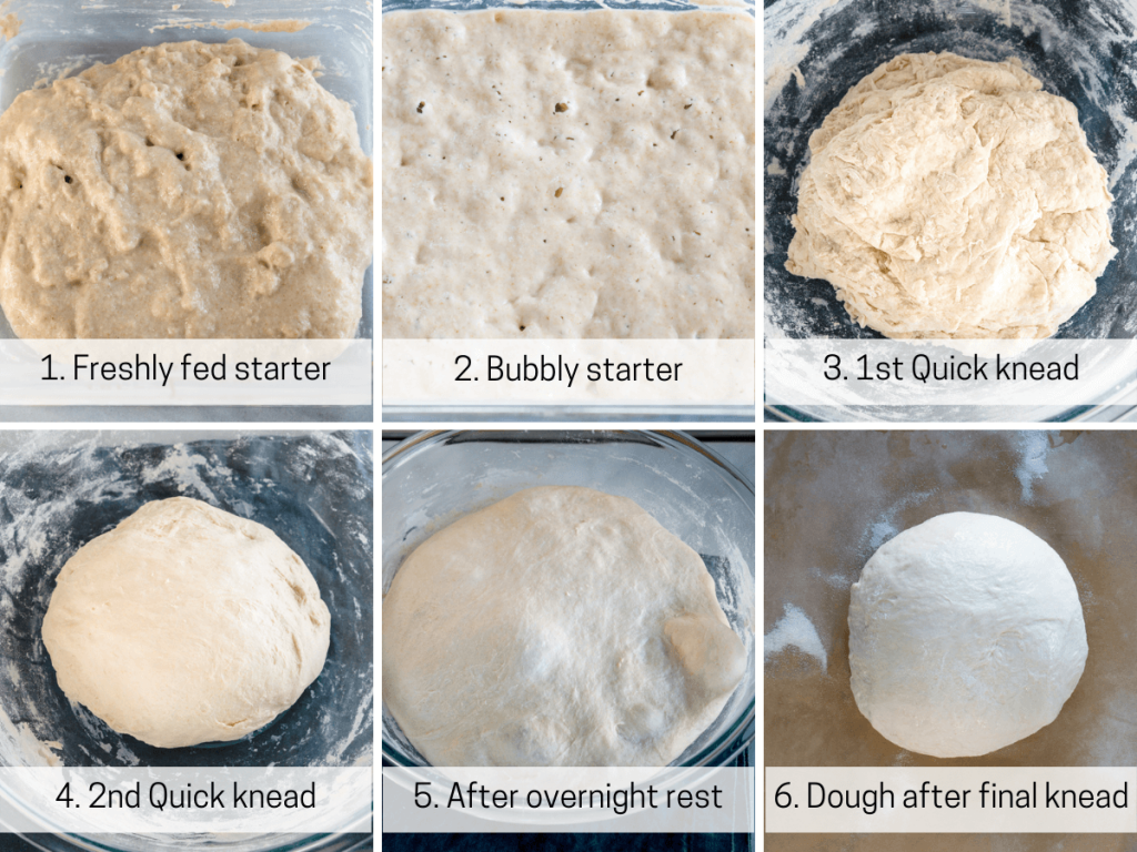 6 photo collage of the stages of bread dough progression